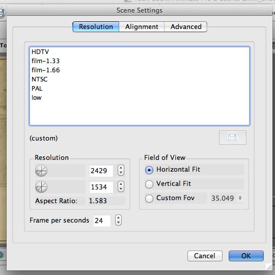 Toon Boom Animate Pro document/canvas settings